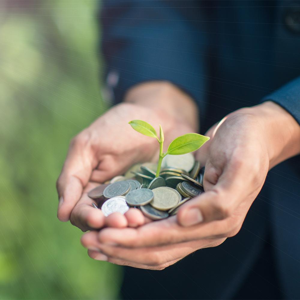 Non-Profit Giving